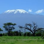 Veduta del Kilimanjaro