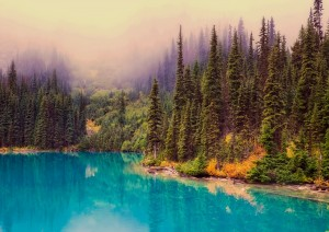Calgary - Banff (130 Km).jpg
