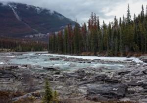 Lake Louise - Jasper (235 Km).jpg