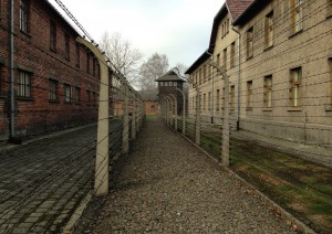 Cracovia: Auschwitz.jpg