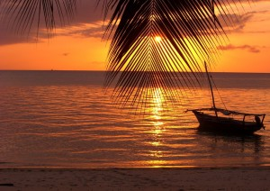 Arusha (volo) Zanzibar.jpg