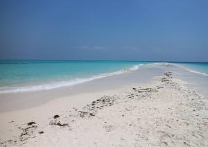 Zanzibar (volo) Italia.jpg