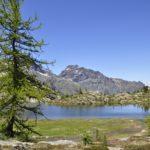 Parco Naturale Mont Avic