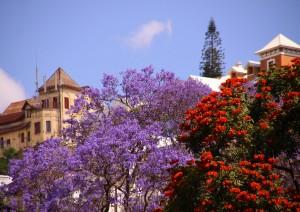 Antananarivo.jpg