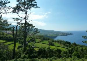 Escursione All'isola Di Pico.jpg