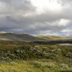 Altopiano di Hardangervidda
