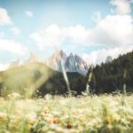 Paesaggio delle Dolomiti (Photo by daniel plan on Unsplash)