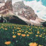 Paesaggio delle Dolomiti (Photo by Damiano Baschiera on Unsplash)