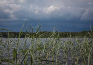 Lappeenranta - Saimaa - Lappeenranta (65 Km).jpg