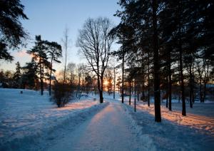 Turku - Salo - Fiskars - Helsinki (300 Km).jpg