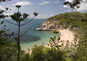 Cairns - Townsville (350 Km / 4h 15min) (traghetto) Magnetic Island.jpg