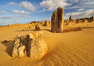 Perth / Escursione Al Pinnacles Desert.jpg