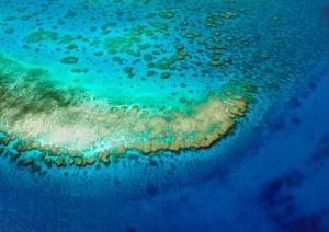 Magnetic Island / Escursione Grande Barriera Corallina.jpg
