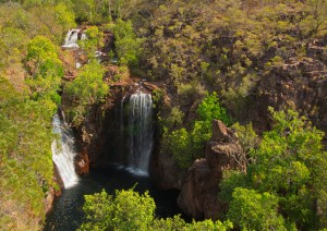 Darwin / Escursione Al Litchfield National Park.jpg