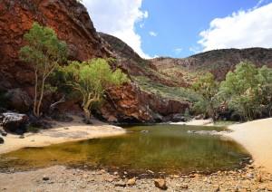 Alice Springs - Simpsons Gap - Ormiston Gorge - Wilora (520 Km / 6h 45min).jpg