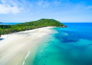 Cairns: Cape Tribulation E Daintree Tropical Forest.jpg