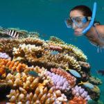 Snorkeling alla Barriera Corallina