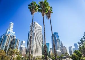 Venice Beach - Los Angeles (30 Km).jpg