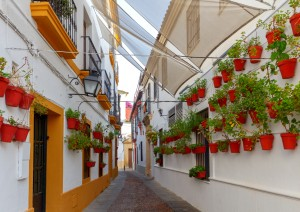 Granada - Antequera - Córdoba (215 Km / 2h 35min).jpg