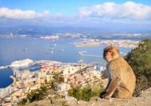 Cadice - Tarifa - Gibilterra (155 Km / 2h 25min).jpg