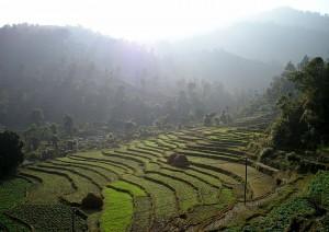 Kathmandu - Nagarkot (1h).jpg