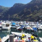 Escursione in barca per vedere i delfini