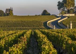 Bordeaux - Médoc - Bordeaux (190 Km).jpg