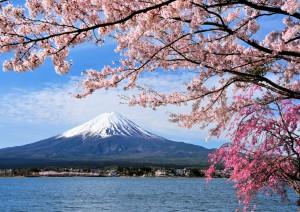 Tokyo - Hakone E Monte Fuji - Tokyo.jpg