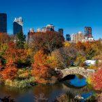 Central Park e il foliage