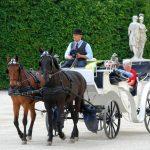 Fiaker, le famose carrozze viennesi trainate da cavalli