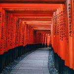 Tunnel di porte torii a Kyoto