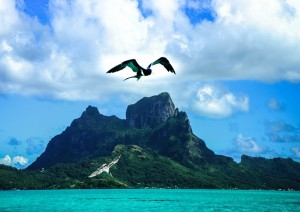 Tahaa - Bora Bora.jpg