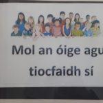 Lingua irlandese