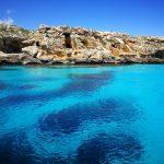 Bue marino a Favignana [foto di Alessandro Bevilacqua]