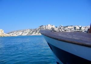 Temoli - Isole Tremiti.jpg