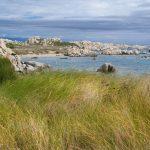 Isole di Lavezzi [Foto di jacqueline macou da Pixabay]
