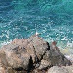 Acque turchesi dell'isola di Capraia [Foto di Federica Bruni da Pixabay]