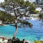 Verde e mare a San Domino (isole Tremiti)