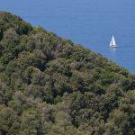 Tratto della costa degli Etruschi