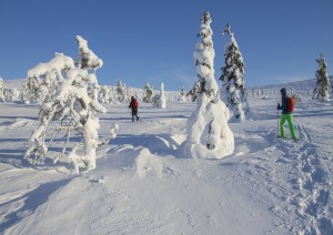 Passeggiata Nella Neve.jpg
